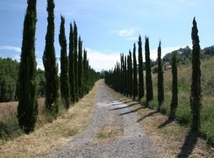 Hiekkatie Toscanassa