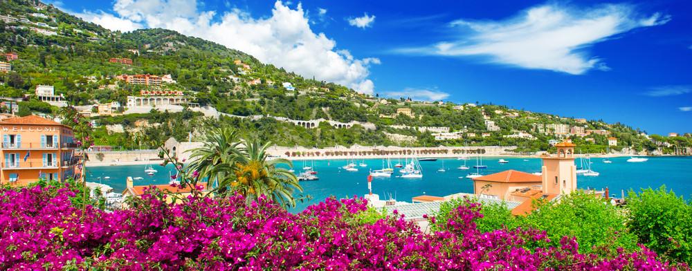 Ranska välimeri kukkia